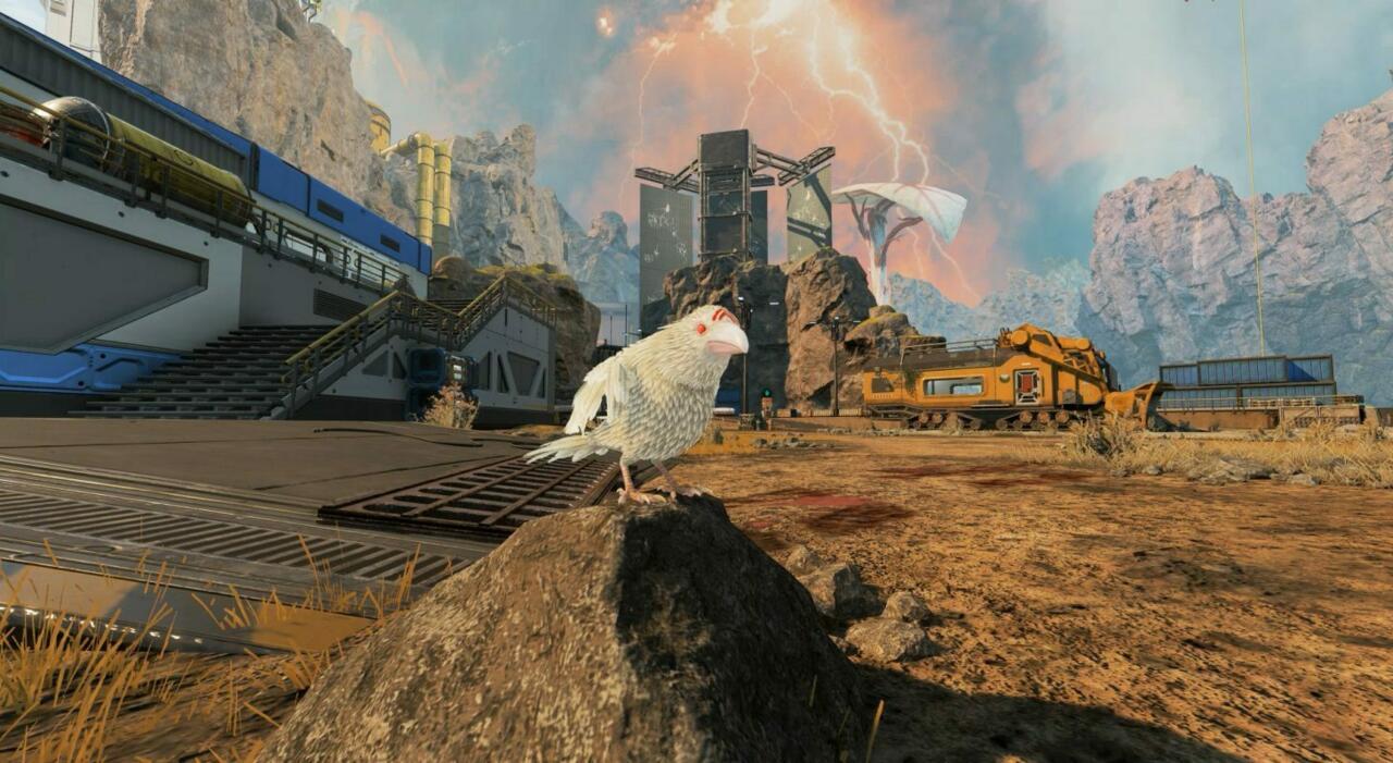 Le corbeau blanc
